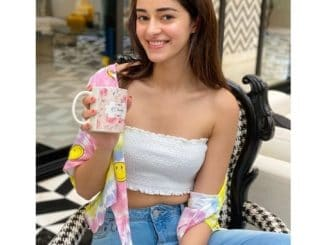 After 'Khaali Peeli' achievement, Ananya Panday wants the lead role in the action film
