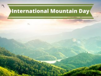 December 11th: International Mountain Day - Trendy Bash