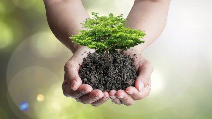 December 5th: World Soil Day