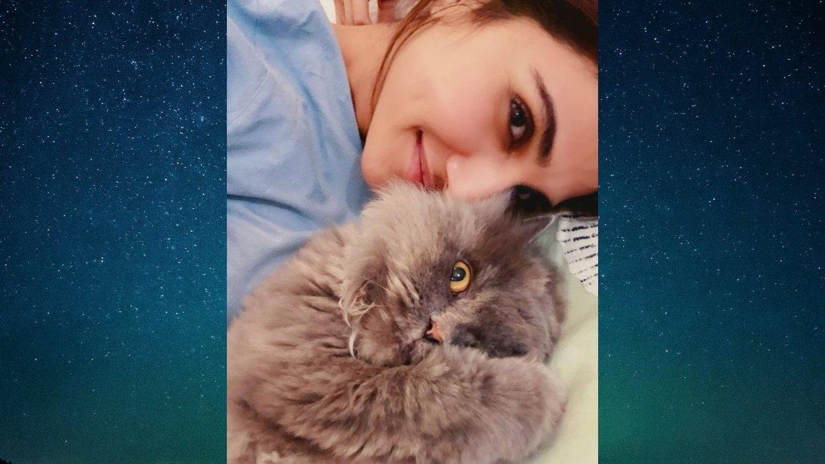 Vaani Kapoor posts adorable picture with her cat -TrendyBash