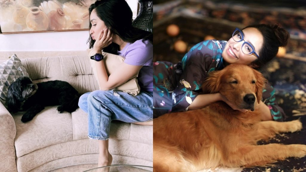 Shraddha Kapoor appeals to punish severely for mistreating animals -Trendy Bash