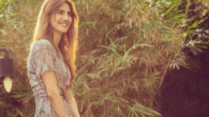 Vaani Kapoor paints her canvas with ethnicity in the latest post